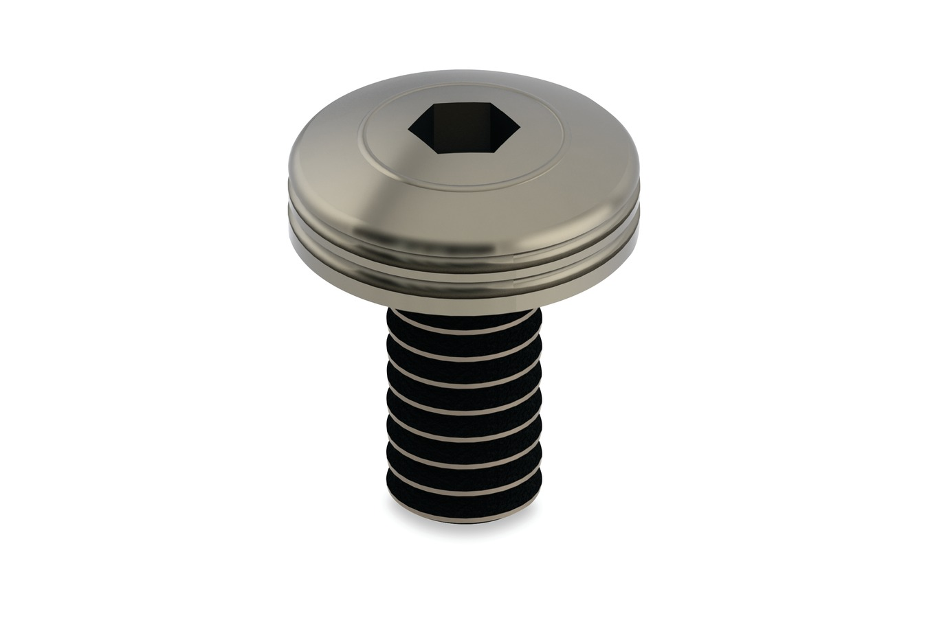 "1/4""-20 x 1/2"" Polished Piston Screw, 9/16"" Diameter Head"